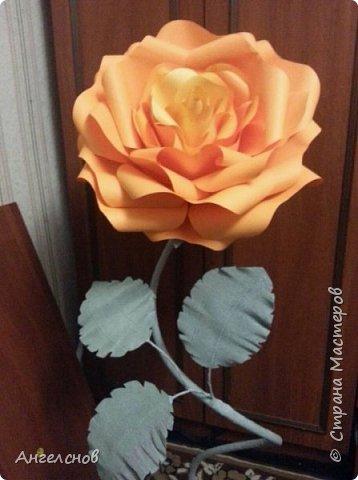 Роза из бумаги.Высота 150 см,диаметр цветка 55 см фото 1