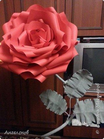 Роза из бумаги.Высота 150 см,диаметр цветка 55 см фото 2
