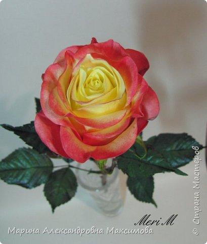 Роза сделана из зефирного фоамирана, стебель - из глины.  фото 1