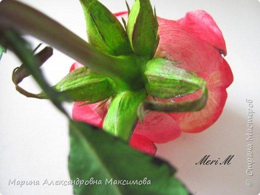 Роза сделана из зефирного фоамирана, стебель - из глины.  фото 5