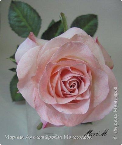Роза сделана из зефирного фоамирана, стебель - из глины.  фото 6