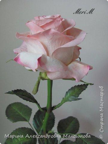 Роза сделана из зефирного фоамирана, стебель - из глины.  фото 9