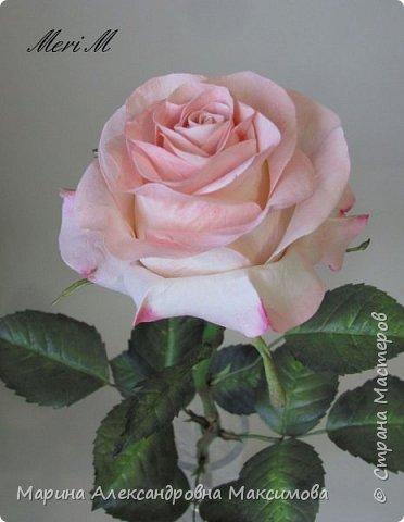 Роза сделана из зефирного фоамирана, стебель - из глины.  фото 8