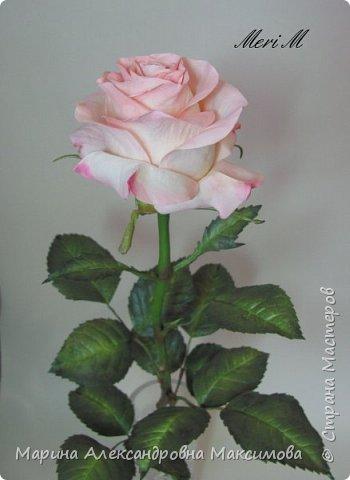 Роза сделана из зефирного фоамирана, стебель - из глины.  фото 10