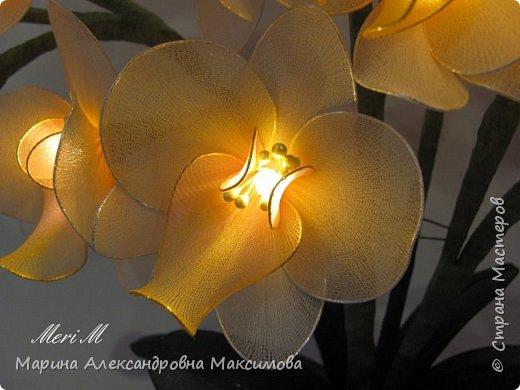 """Светильник """"Лилии"""" переливается плавно разными цветами.  фото 8"""