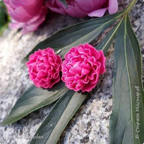 ПИОНЫ... Серьги с цветами из полимерной глины!) Фурнитура - серебро 925 пробы. фото 2