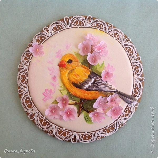 Друзья! На пряниках можно нарисовать все! Пряник на фото диаметром 22 см. Птичка выполнена в технике пайпинг (объемная заливка), расписана пищевыми красителями)
