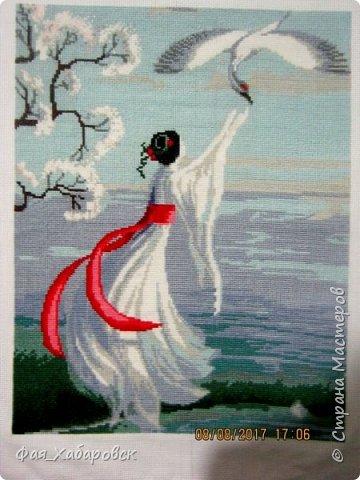 Белый журавль фото 1