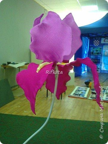 Ирис, ростовой цветок из бумаги фото 1