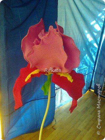 Ирис, ростовой цветок из бумаги фото 2