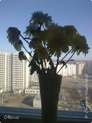 Я сейчас живу на пятнадцатом этаже Вид из окна стал привычен уже  фото 1