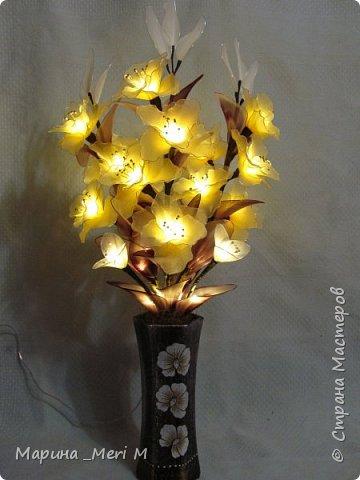 """Светильник """"Лилии"""" переливается плавно разными цветами.  фото 20"""