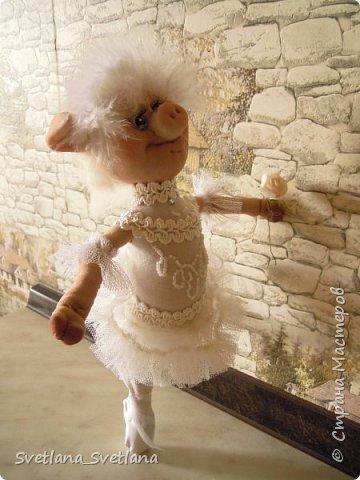 Я на пальчики встаю Ловко и умело И над сценою парю, Словно лебедь белый. Озорнее ветерка, Как пушиночка, легка В пышной пачке синьорина Танцовщица балерина. (Автор  затерялся на просторах интернета...)  фото 1