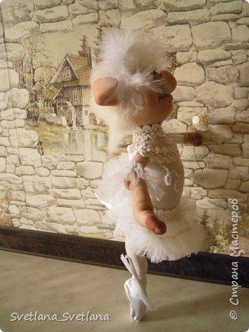 Я на пальчики встаю Ловко и умело И над сценою парю, Словно лебедь белый. Озорнее ветерка, Как пушиночка, легка В пышной пачке синьорина Танцовщица балерина. (Автор  затерялся на просторах интернета...)  фото 2