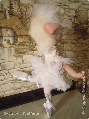 Я на пальчики встаю Ловко и умело И над сценою парю, Словно лебедь белый. Озорнее ветерка, Как пушиночка, легка В пышной пачке синьорина Танцовщица балерина. (Автор  затерялся на просторах интернета...)  фото 3