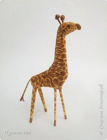 Лето, жара! Сплетём-ка мы жирафа! И ещё верблюда. фото 21