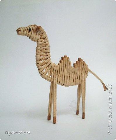 Лето, жара! Сплетём-ка мы жирафа! И ещё верблюда. фото 22