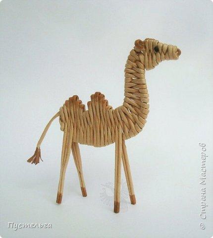 Лето, жара! Сплетём-ка мы жирафа! И ещё верблюда. фото 23