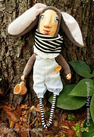 Такой вот грустный зайчишка гуляет по моему саду! фото 1