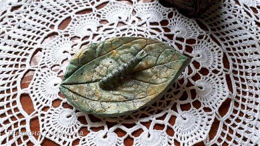 Решила сделать отливку из гипса своего любимого цветка - Клеродендрума Томпсона, покрасила, немного присыпала блестками........ посадила на него гусеницу..... фото 2