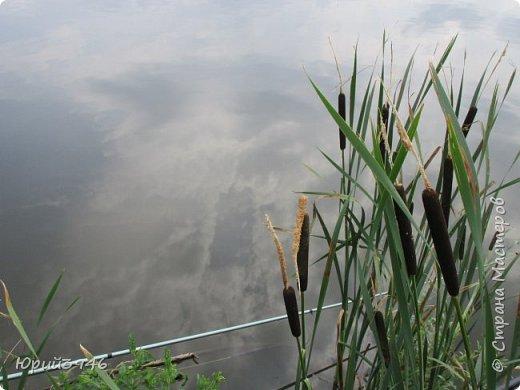 Пруды по своему красивы...Удивительные картины покоя и тишины... фото 6