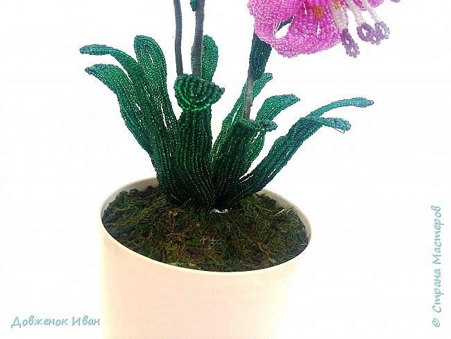 Лилия Кудрявая, сделана по мк Светланы Макаровой. Высота лилии 70см. фото 9