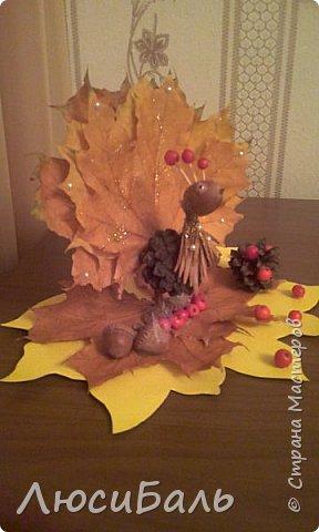Осень. фото 4