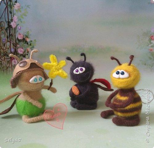 Пчёлка фото 4