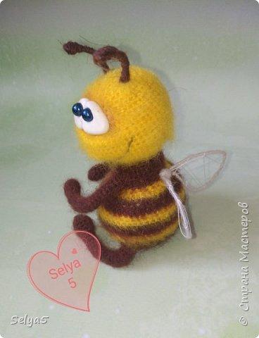 Пчёлка фото 1