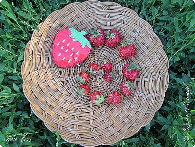 Доброго дня  Страна Мастеров!  Здравствуй, лето-летечко, Ягодное времечко!  Вот и поспели первые летние ягоды садовой виктории, спелой, сладкой, ароматной! фото 17