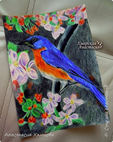 рисунки цветными карандашами фото 2
