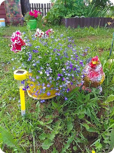 Здравствуйте, здравствуйте, дорогие друзья и гости моей странички! Давненько я здесь не была. Муза творчества меня покинула на неопределенный срок, зато муза огородно-садовая рвет и мечет.  Хочу показать в сегодняшнем фоторепортаже наши с мужем дела в саду-огороде. Это цветочное оформление на террасе. На самой террасе работы много, но...  фото 12