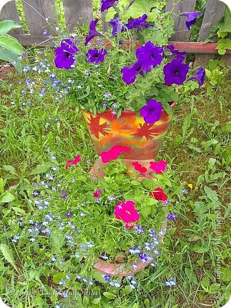 Здравствуйте, здравствуйте, дорогие друзья и гости моей странички! Давненько я здесь не была. Муза творчества меня покинула на неопределенный срок, зато муза огородно-садовая рвет и мечет.  Хочу показать в сегодняшнем фоторепортаже наши с мужем дела в саду-огороде. Это цветочное оформление на террасе. На самой террасе работы много, но...  фото 17
