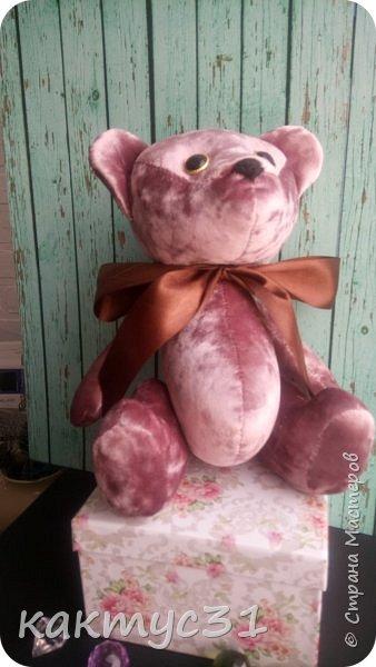 Всем привет, родился у нас Михаил. Подарочный вариант медведя.  фото 2