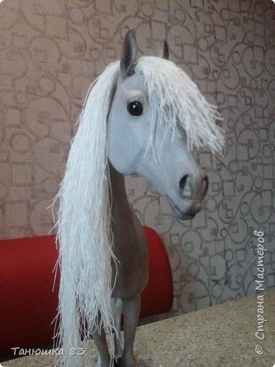 Привет всем.  Этот Конь очень большой па моим меркам,делаю для подруги,ждет она его аж сентября того года,но он к ней не торопится все время палки в колеса втыкает. фото 1