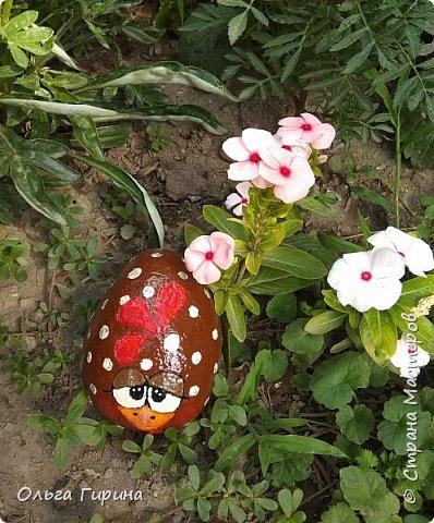 Приветствую, дорогие соседи!Продолжаю украшать свой участок,на этот раз фигурками из фанеры и расписными камнями.Вот такие курочки бегают теперь у меня в саду. фото 11