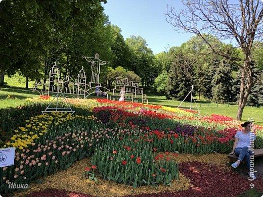 Здравствуйте, дорогие соседи!  Уже и середина лета. А я вот хочу вам напомнить о весне. Весна-цветы-тюльпаны. Это, наверное, у многих так воспринимается. Эти фото сделаны в Кировоградском городском дендропарке (нынче г.Кропивницкий, Украина). Немножко опоздали. Пик цветения был на недельку раньше. А всё же красиво! Идём гулять по аллеям парка.    фото 55