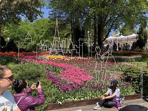Здравствуйте, дорогие соседи!  Уже и середина лета. А я вот хочу вам напомнить о весне. Весна-цветы-тюльпаны. Это, наверное, у многих так воспринимается. Эти фото сделаны в Кировоградском городском дендропарке (нынче г.Кропивницкий, Украина). Немножко опоздали. Пик цветения был на недельку раньше. А всё же красиво! Идём гулять по аллеям парка.    фото 53