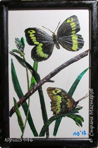 Бабочка цирцея (Brintesia circe). Основа - древесностружечная плита. Материалы - жесть, проволока, краска. Размер - 18 х 28 см фото 1