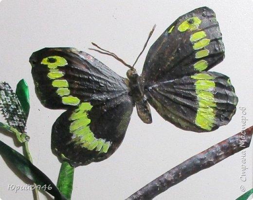 Бабочка цирцея (Brintesia circe). Основа - древесностружечная плита. Материалы - жесть, проволока, краска. Размер - 18 х 28 см фото 2