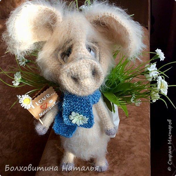 Дружище Свин ( связан по МК сайта Амигуруми) фото 13