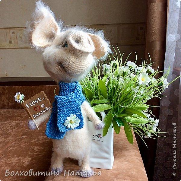 Дружище Свин ( связан по МК сайта Амигуруми) фото 9