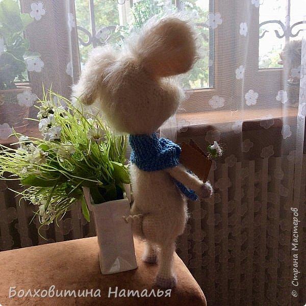 Дружище Свин ( связан по МК сайта Амигуруми) фото 14