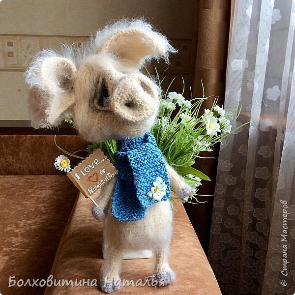 Дружище Свин ( связан по МК сайта Амигуруми) фото 8