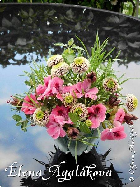 Добрый день! Этим летом я решила осуществить еще одну свою мечту - научится цветочному дизайну. Очень люблю цветы, травки-муравки, деревья и вообще все растения. Уже второй месяц я учусь создавать красоту! Очень увлекательно работать с цветами!  Я взяла небольшой курс по цветочному дизайну. Дома делаю оранжировки из того что под рукой, беру цветы из своего садика. Другие композиции делала для цветочного магазина где прохожу практику. Делюсь красотой! фото 1