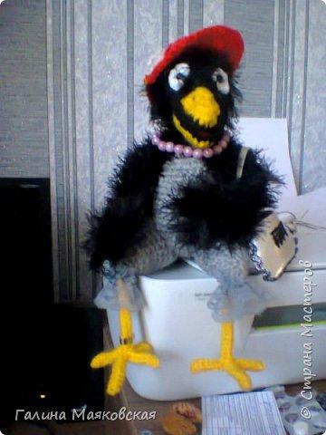 Привет всем! Сегодня хочу показать новых птичек.  Знакомьтесь : это  донна Клара. Очень хочет в отпуск. фото 6