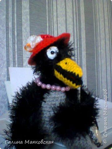Привет всем! Сегодня хочу показать новых птичек.  Знакомьтесь : это  донна Клара. Очень хочет в отпуск. фото 7