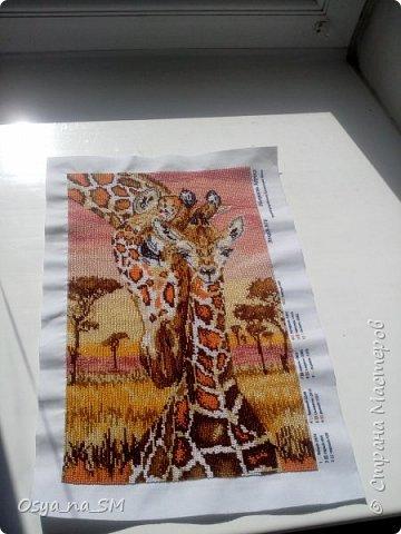 """Здравствуйте,хочу вам показать свои работы вышитые бисером.Начала вышивать осенью 2016...и сразу с больших работ.Это первая серьезная работа.""""Полуницi"""" от торговой марки вышиванка. фото 11"""
