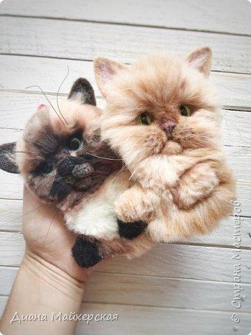 Хочу так же представить вашему вниманию валяные брошки) В первую очередь покажу котиков) Делала я их на заказ, по фото живых питомцев)  фото 2