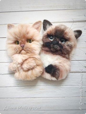 Хочу так же представить вашему вниманию валяные брошки) В первую очередь покажу котиков) Делала я их на заказ, по фото живых питомцев)  фото 3